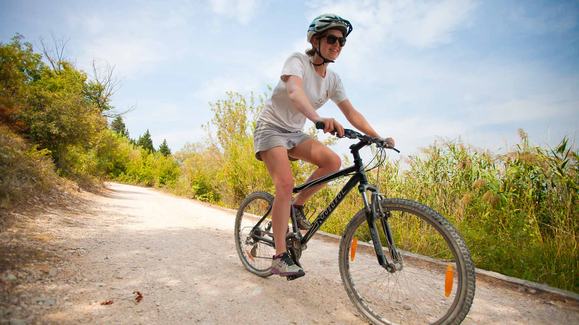 Cycle through the treetops, the perfect summer activity in Limberg